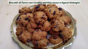 Biscotti di Farro con Uvetta, mirtillo rosso e Agave biologici-01